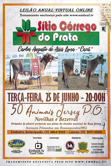 LEILÃO ON LINE | SITIO CORREGO DO PRATA